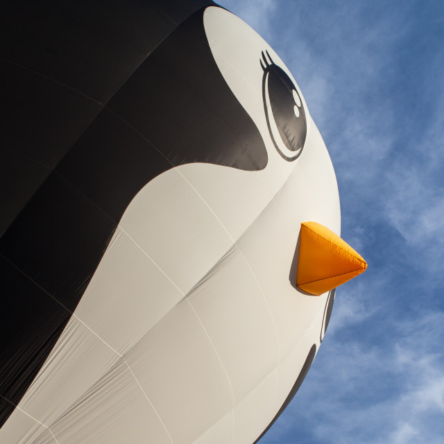 """Giant Penguin"" stock image"