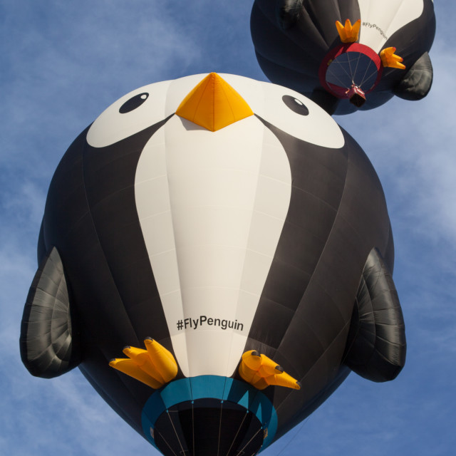 """Flying Penguins"" stock image"