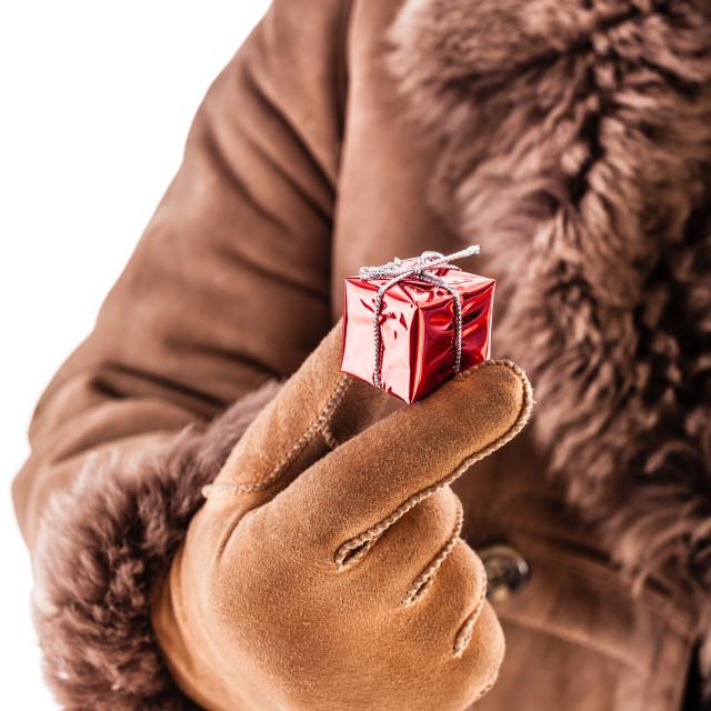 """""""Tiny christmas"""" stock image"""