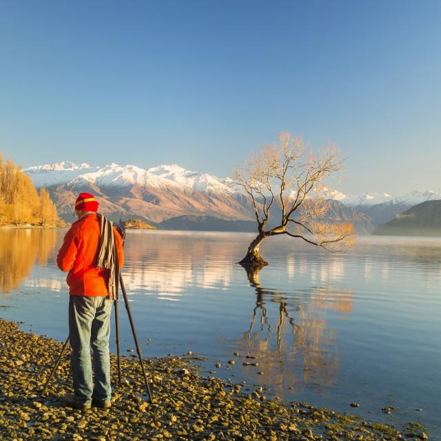 """""""Lake Wanaka, New Zealand"""" stock image"""