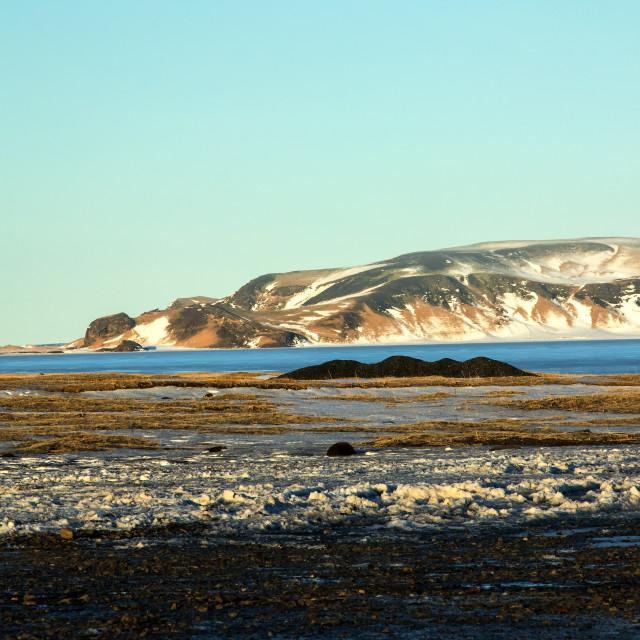 """Lagoon at Dyrholaey, Iceland"" stock image"