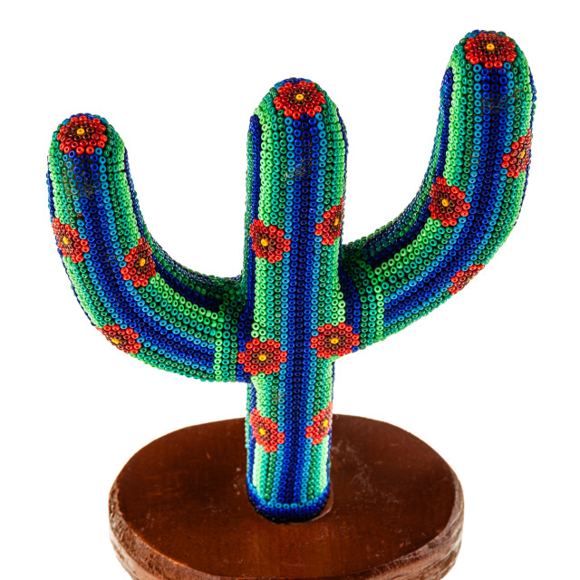 """""""Colorful cactus"""" stock image"""