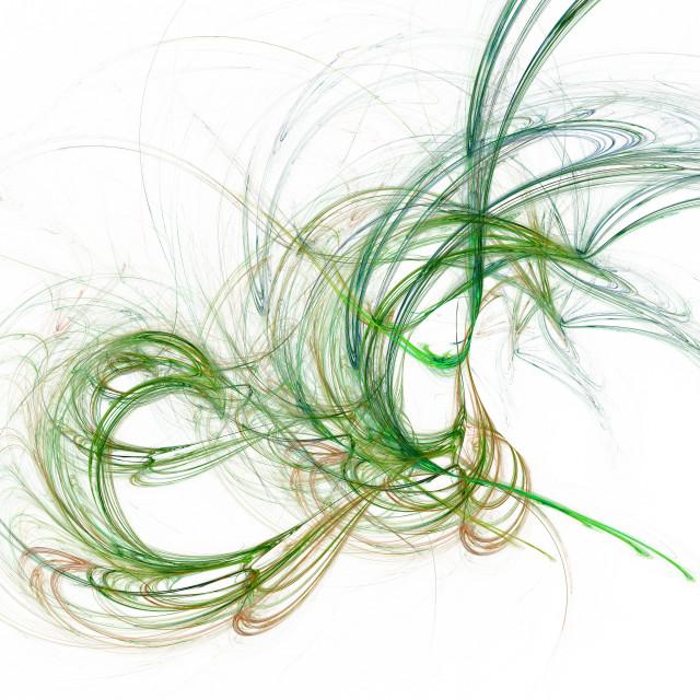 """Swirly fractal"" stock image"