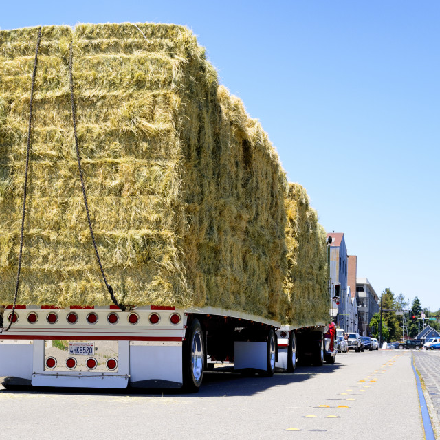 """loaded hay truck"" stock image"
