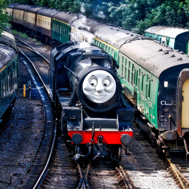 """""""Steam Train in the sidings"""" stock image"""