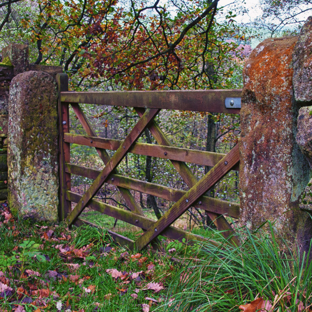 """""""The Gate"""" stock image"""