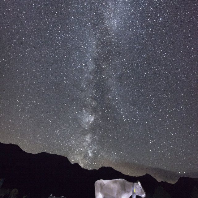 """The Milky Way with a Cow at the bottom"" stock image"