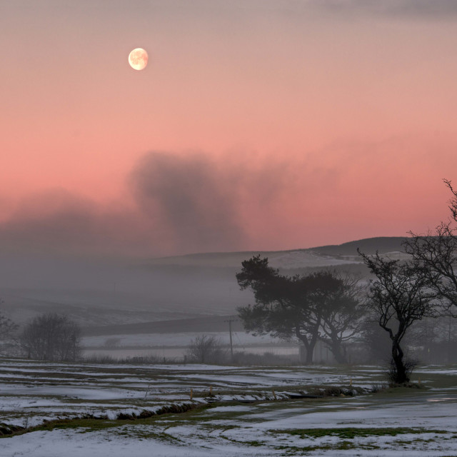 """misty winter morning"" stock image"