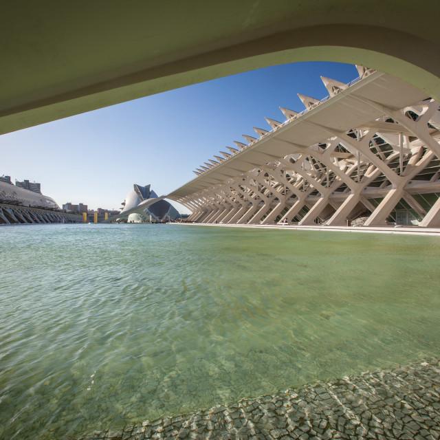 """""""Museo de Ciences, Valencia"""" stock image"""
