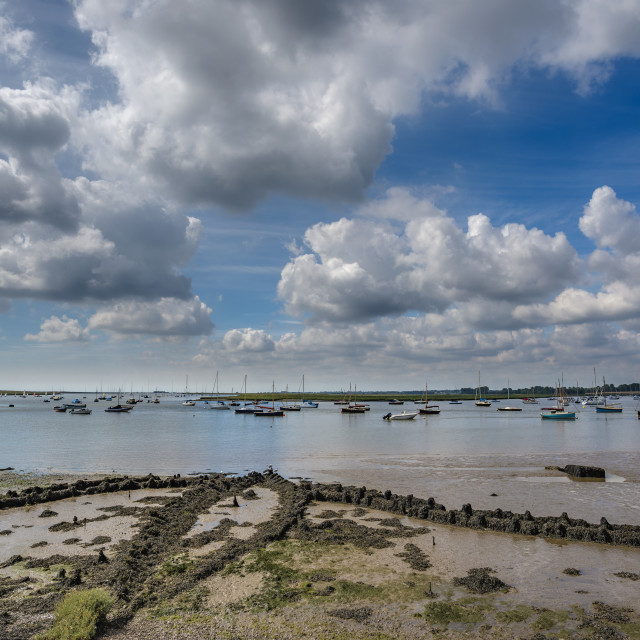 """Estuary in Suffolk"" stock image"