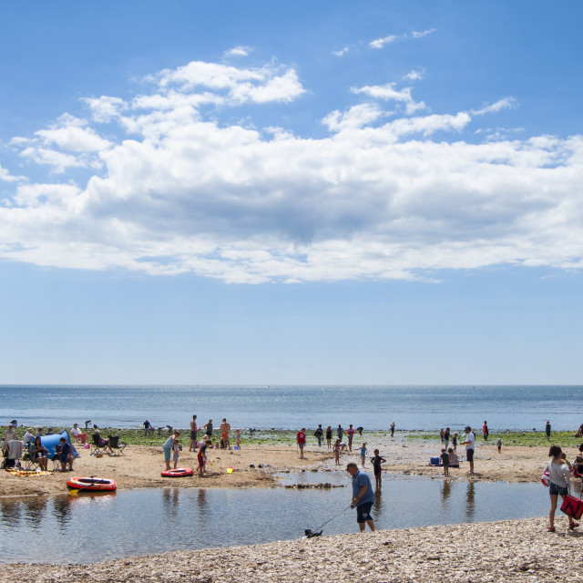"""Charmouth Beach Lagoon"" stock image"