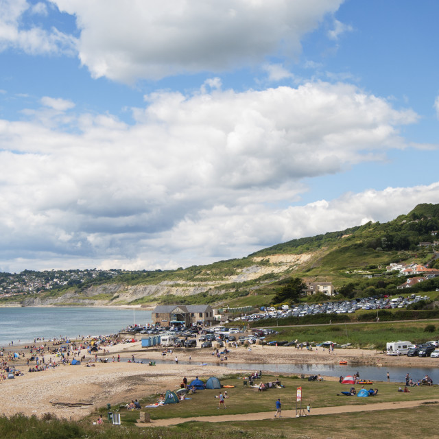 """View of Charmouth Beach"" stock image"
