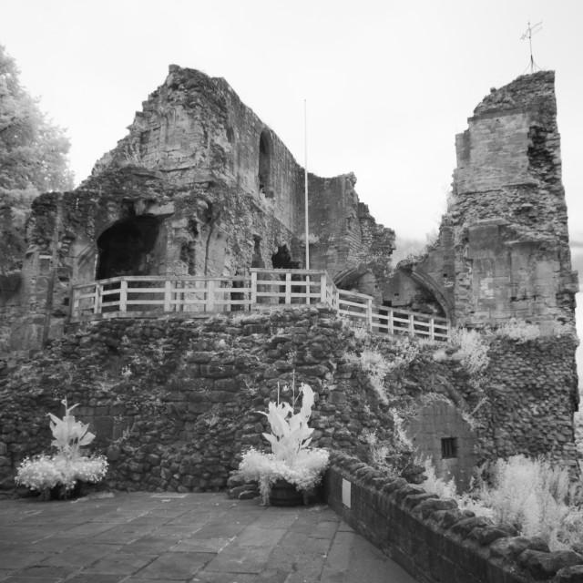 """""""Castle ruin"""" stock image"""