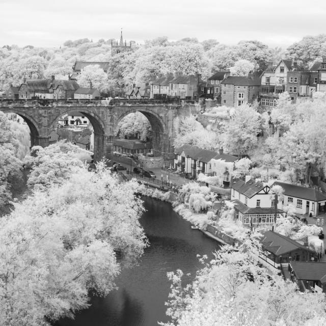 """Bridge, river and trees."" stock image"