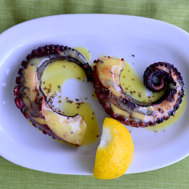 """""""octopus food plate"""" stock image"""