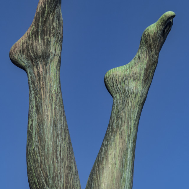 """Blue Skies and Bronze Legs"" stock image"