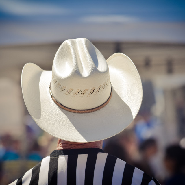 """White Hat"" stock image"