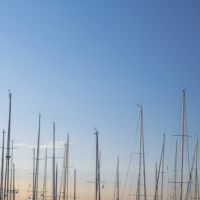 """""""Masts and Sky"""" stock image"""