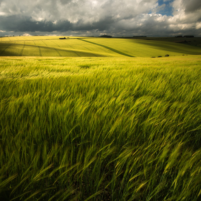 """Fleeting Light over Burdale Valley"" stock image"