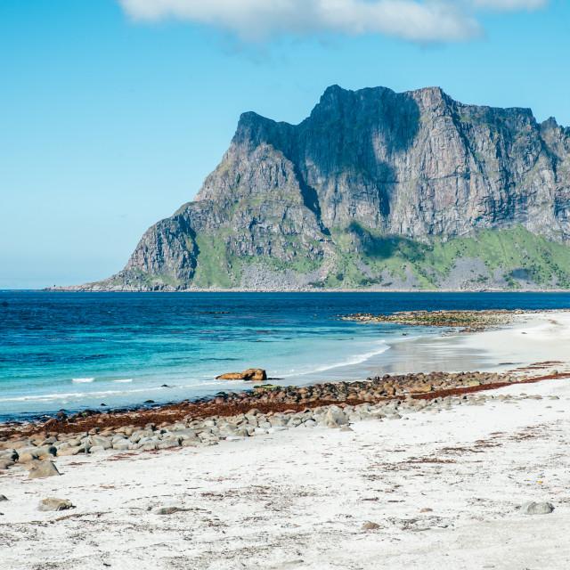 """Arctic surf, Lofoten"" stock image"