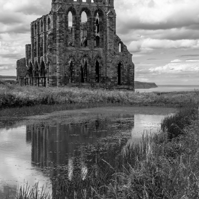"""Whitby Abbey, England"" stock image"