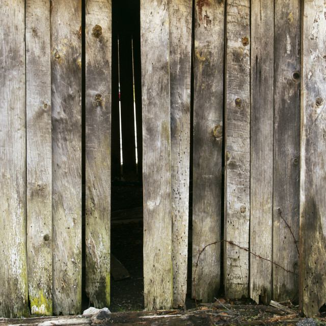 """""""Old wood texture"""" stock image"""