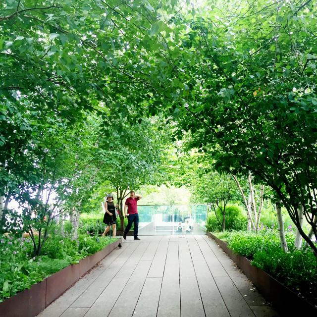 """NYC High Line"" stock image"