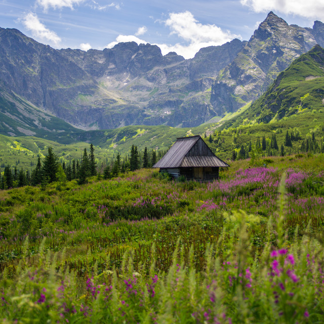 """Sunny Day In The Tatra Mountains"" stock image"