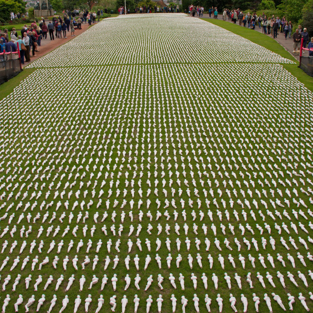 """""""The 19240 Somme Shrouds"""" stock image"""