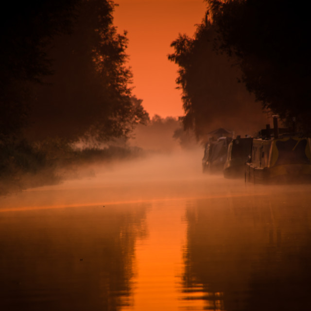 """""""Golden mist"""" stock image"""