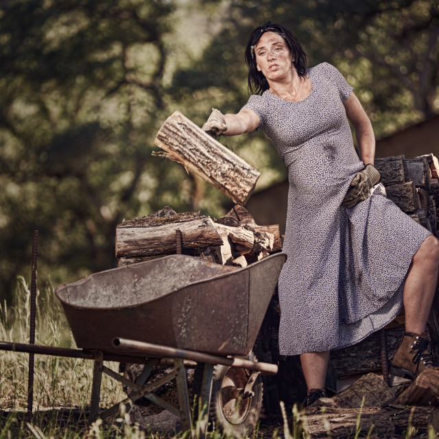"""A Pregnant Woman Loading Wood into a Wheelbarrow"" stock image"