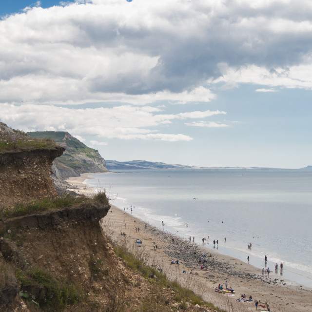 """Charmouth"" stock image"
