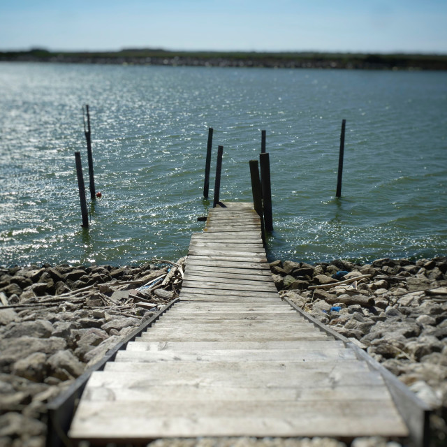 """""""Dock to the Lake"""" stock image"""