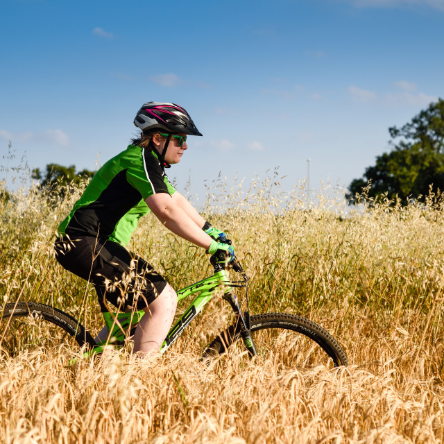 """Mountain Bike Rider On A Summer's Evening"" stock image"