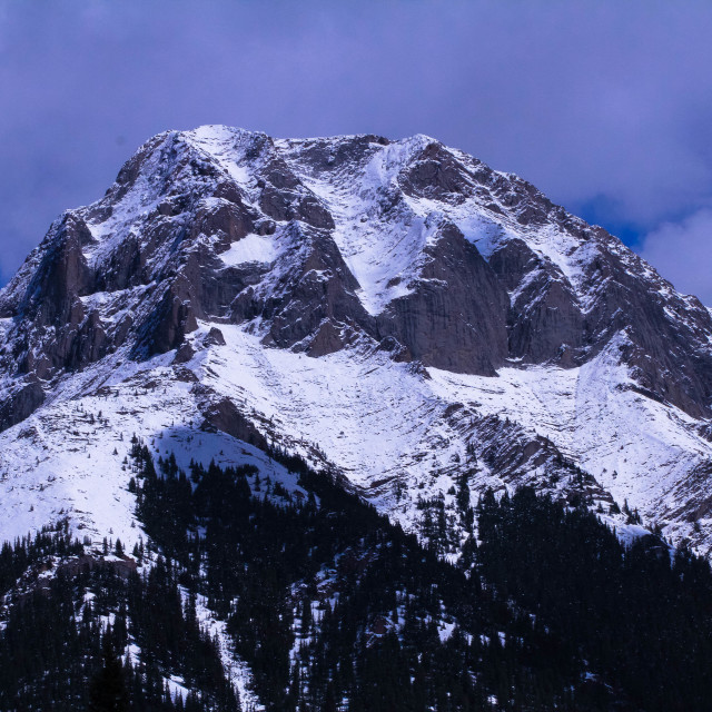 """Summer Mountain"" stock image"