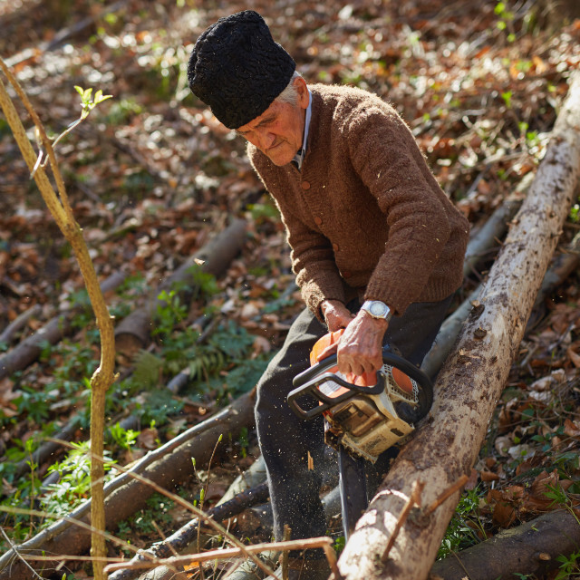 """""""Old woodcutter at work with chainsaw"""" stock image"""