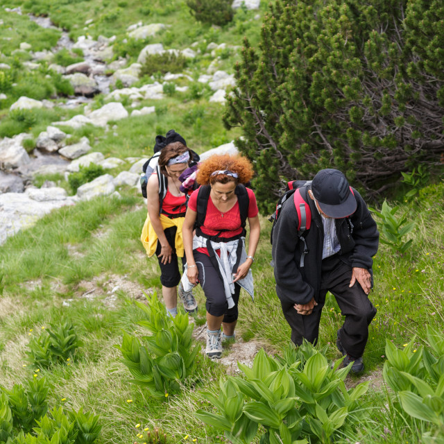 """""""Family of hikers"""" stock image"""