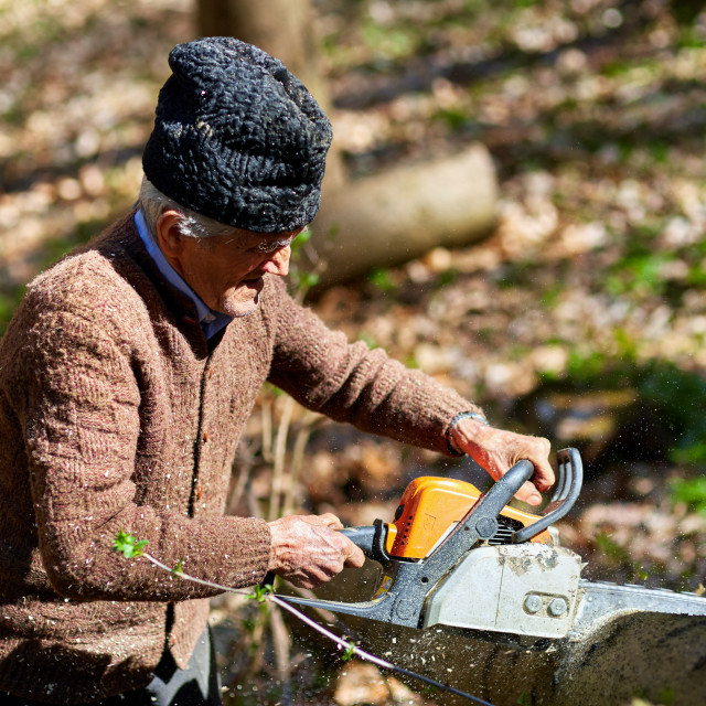"""Old man cutting down trees"" stock image"