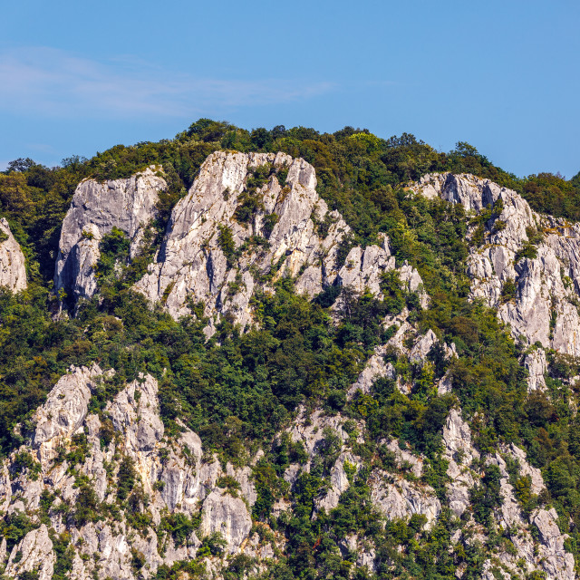 """""""Mountains and forests"""" stock image"""