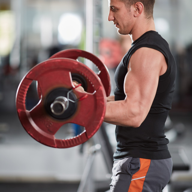 """""""Barbell biceps curl"""" stock image"""
