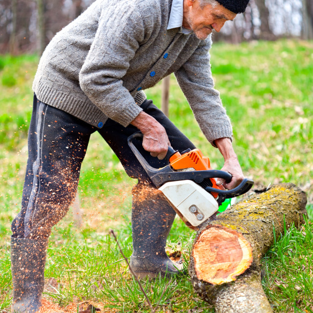 """""""Old farmer with chainsaw cutting a tree"""" stock image"""