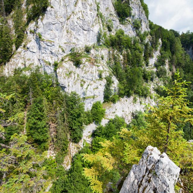 """""""Balcoanele Galbenei peaks"""" stock image"""