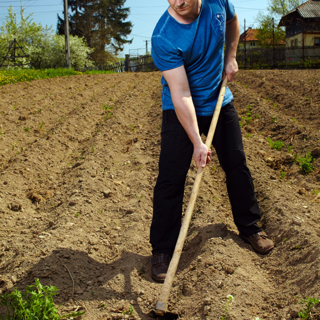 """Man working the land"" stock image"