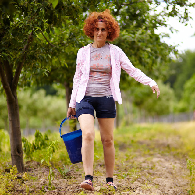 """Farmer lady with a bucket in an orchard"" stock image"