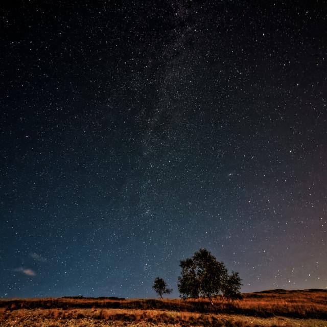"""Starry Sky in Alps"" stock image"
