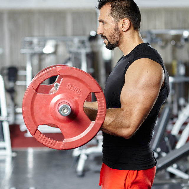 """""""Biceps workout with barbell"""" stock image"""