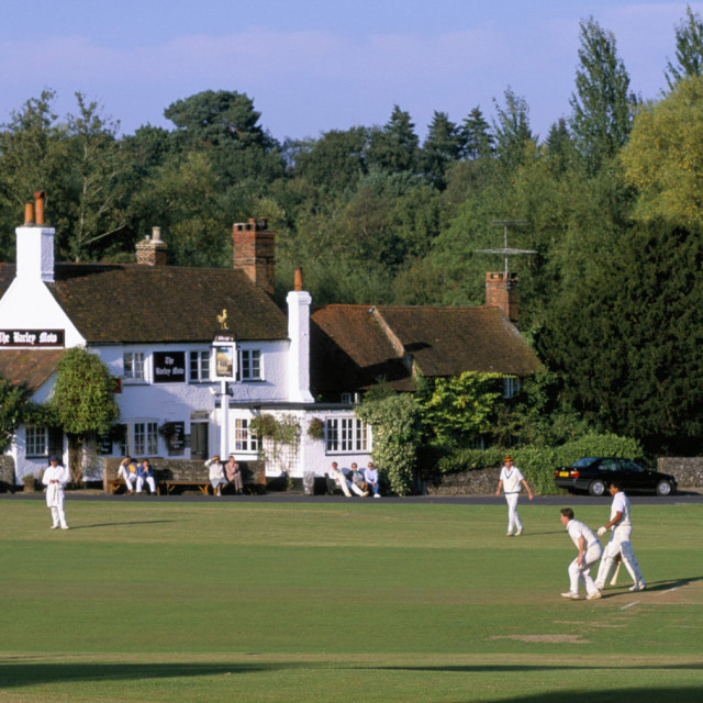 """Village Cricket Match, Tilford Surrey England ."" stock image"