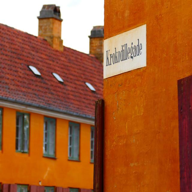 """Crocodile Street, Copenhagen (Krokodillegade)"" stock image"