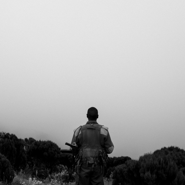 """Julius overlooking fog"" stock image"