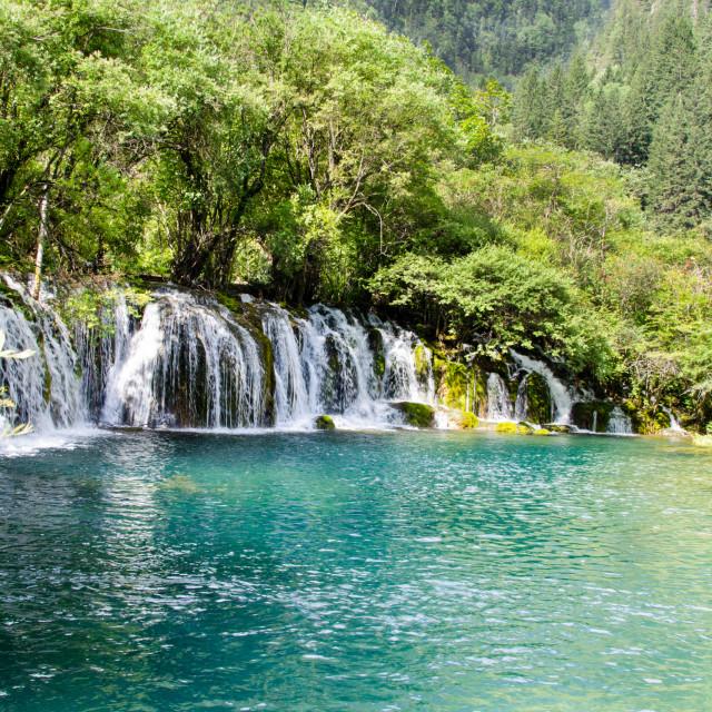 """""""Arrow Bamboo Waterfall"""" stock image"""